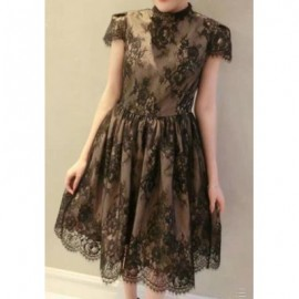 Vintage Stand-Up Collar Short Sleeve Hollow Out Laciness Women's Dress