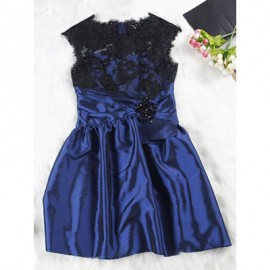 Vintage Round Neck Embroidered See-Through Sleeveless Dress For Women