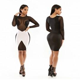 Summer Style Mesh See Through Sexy Patchwork 2015 New Vestidos De Festa Women Dress Eye-Catching Midi Party Dresses HW0302